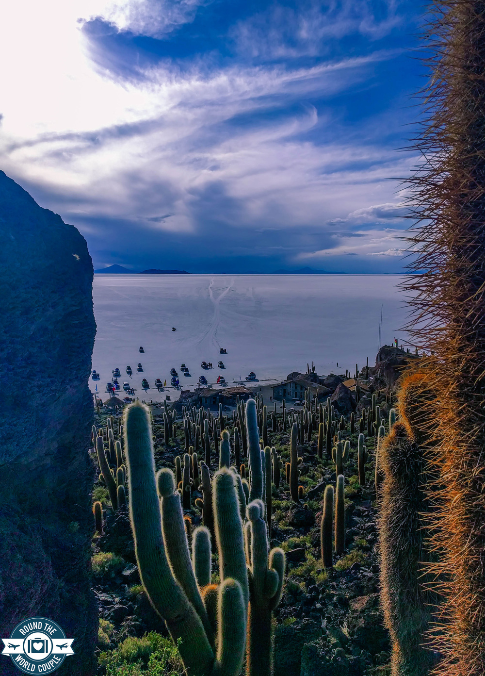 Salt Flats Cactus Island 4 (1 of 1).jpg