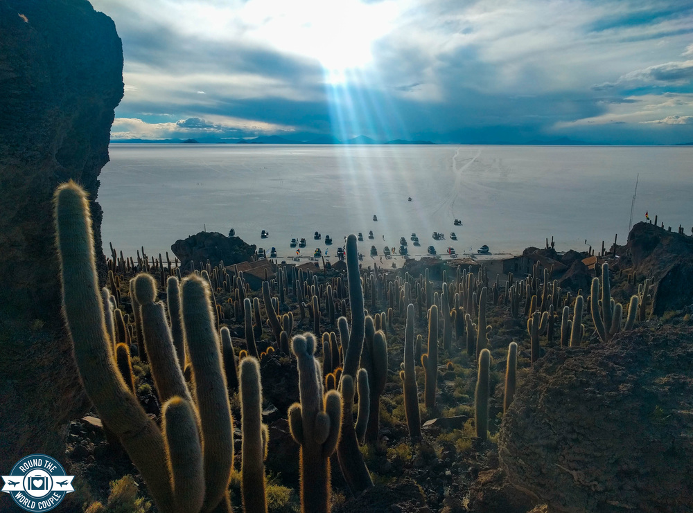 Salt Flats Cactus Island 5 (1 of 1).jpg