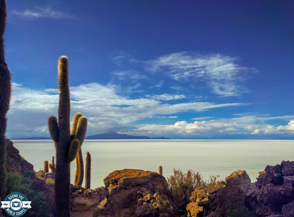 Salt Flats Cactus Island 6 (1 of 1).jpg