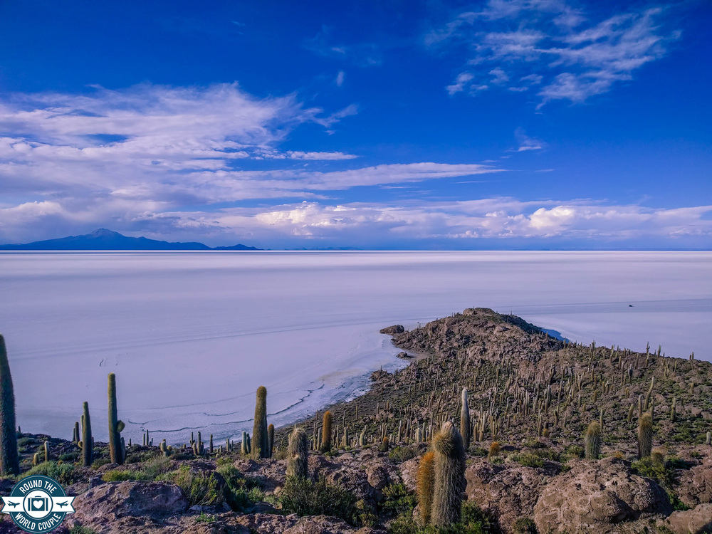 Salt Flats Cactus Island 9 (1 of 1).jpg