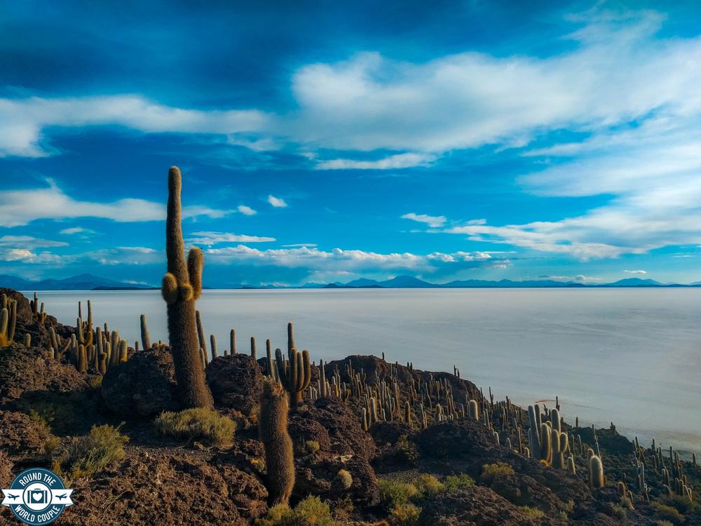 Salt Flats Cactus Island 11 (1 of 1).jpg