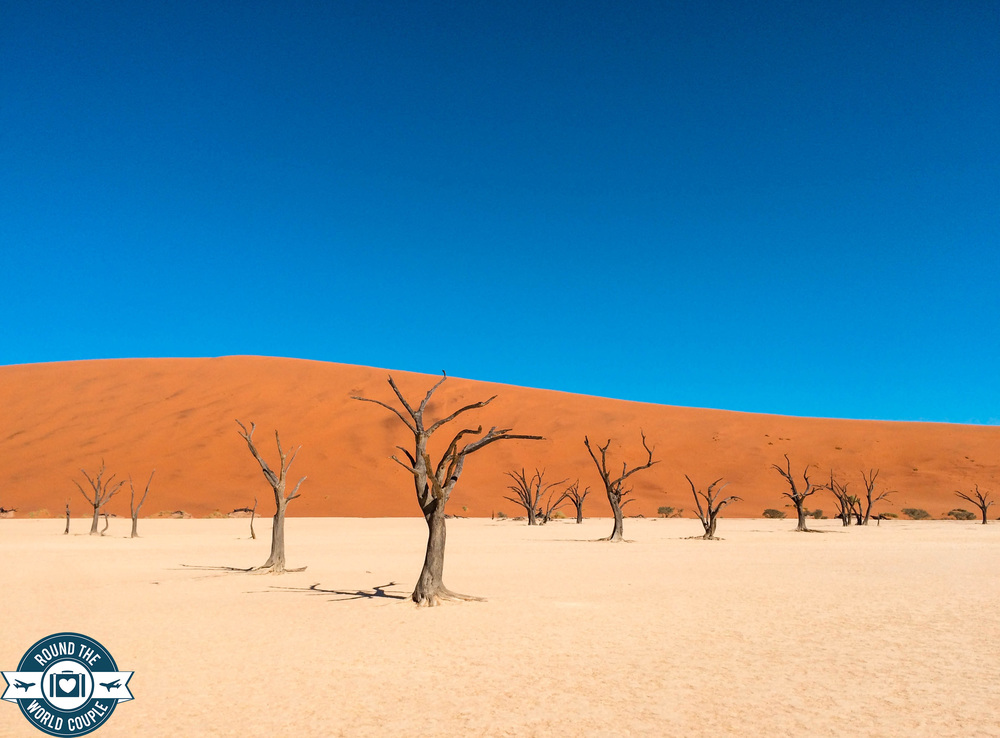 Deadvlei 5 (1 of 1).jpg