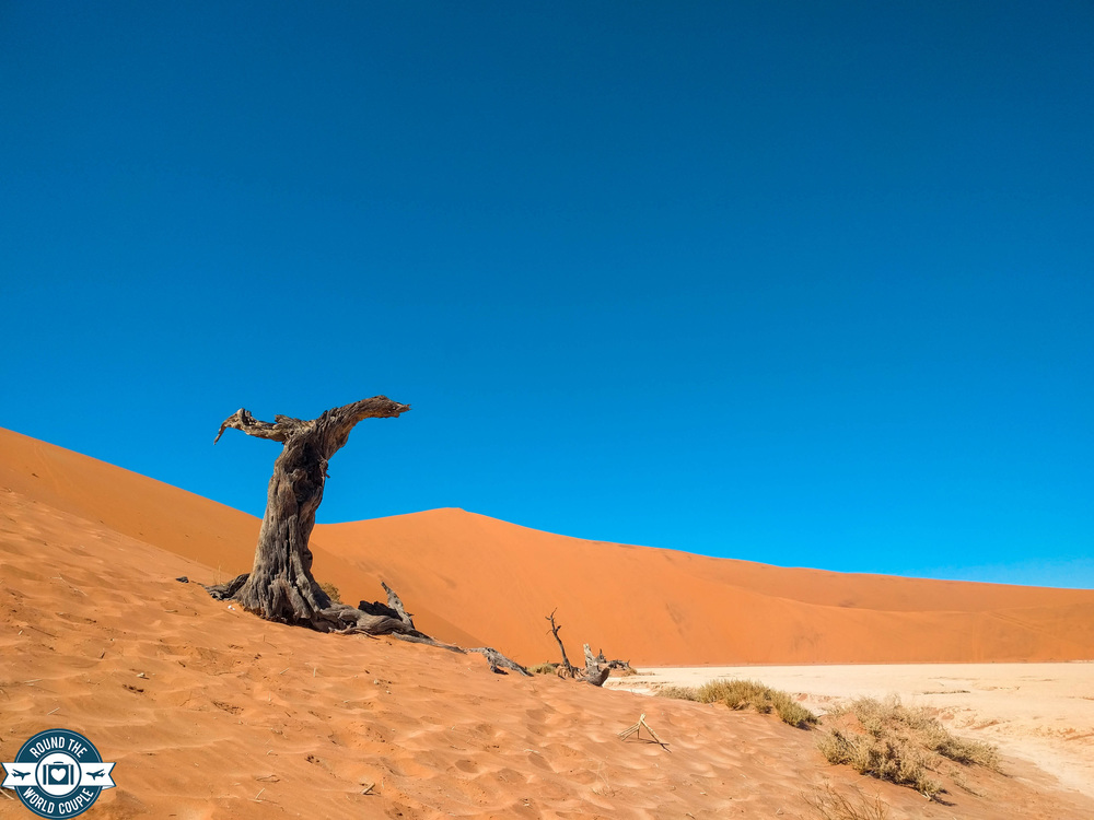 Deadvlei 6 (1 of 1).jpg
