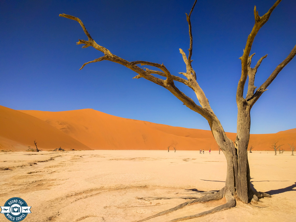 Deadvlei 10 (1 of 1).jpg