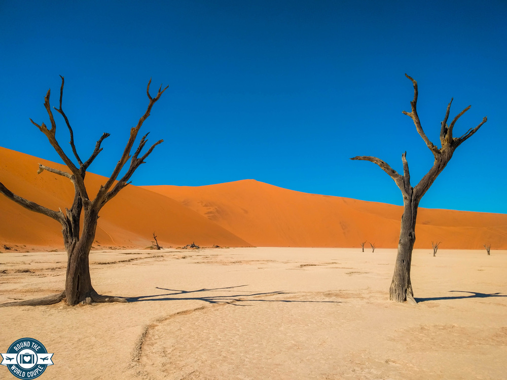 Deadvlei 12 (1 of 1).jpg