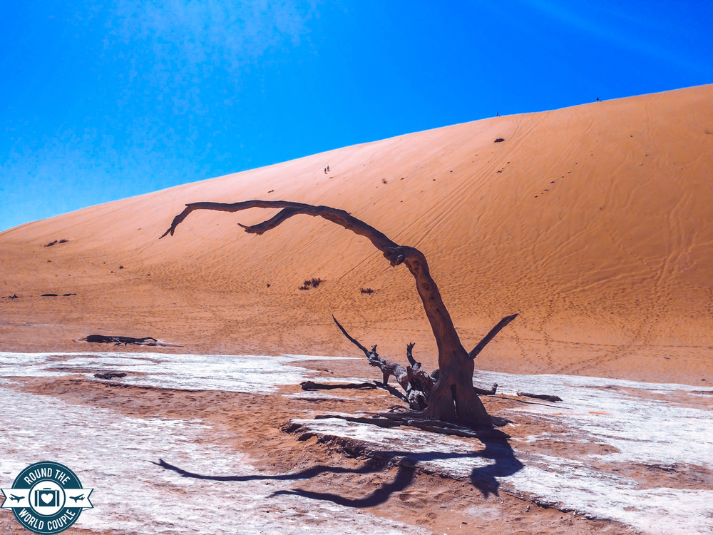 Deadvlei 17 (1 of 1).jpg