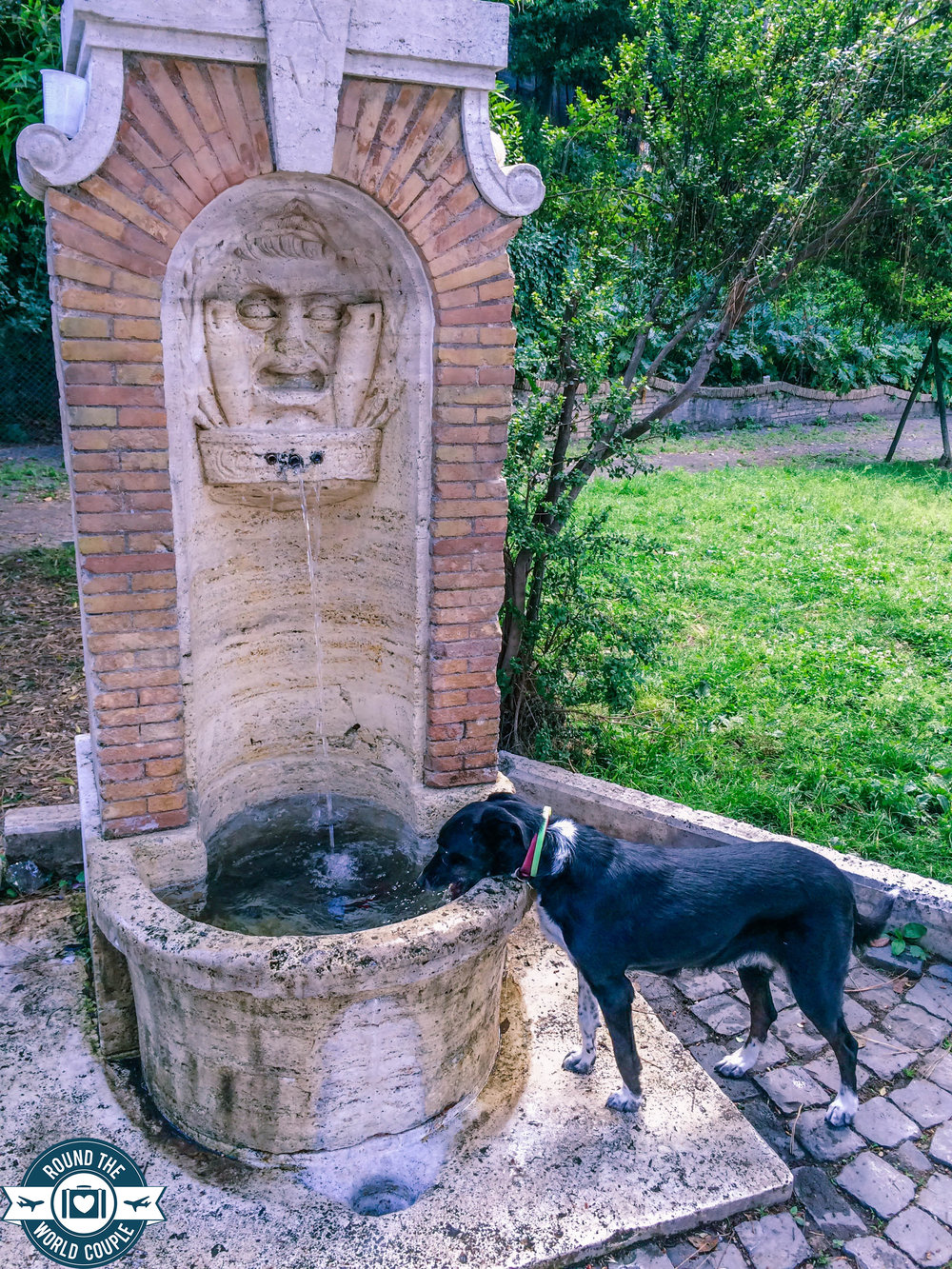 Rome- city- 6 (1 of 1).jpg