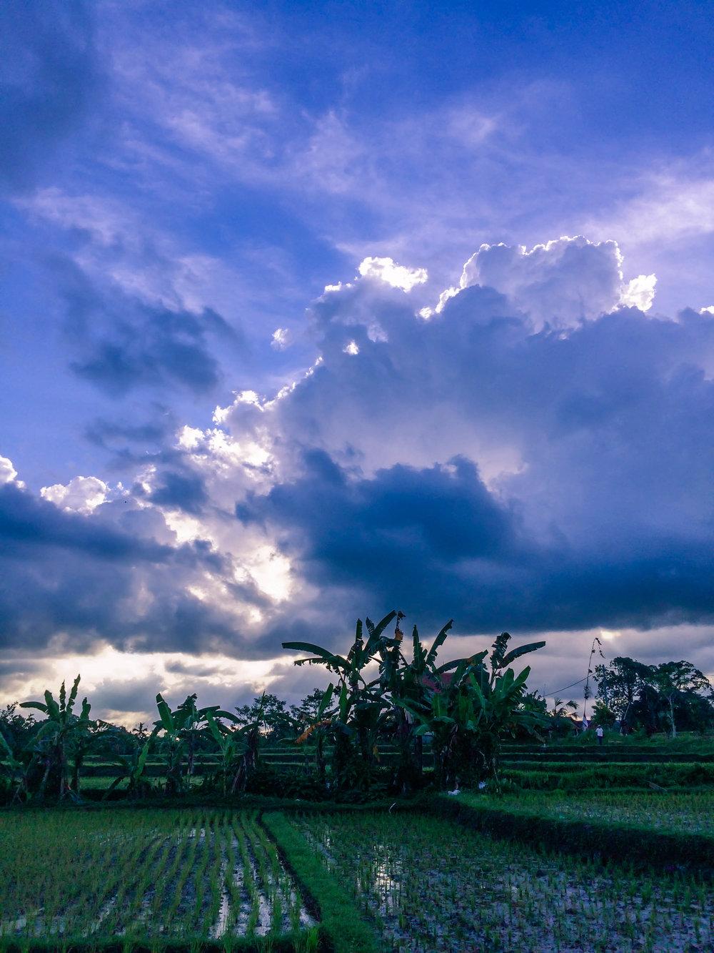 Bali- 18 (1 of 1).jpg