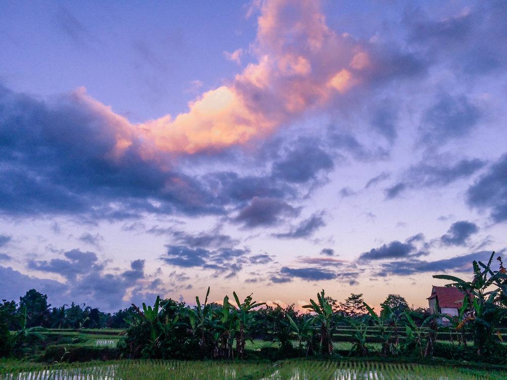 Bali- 23 (1 of 1).jpg