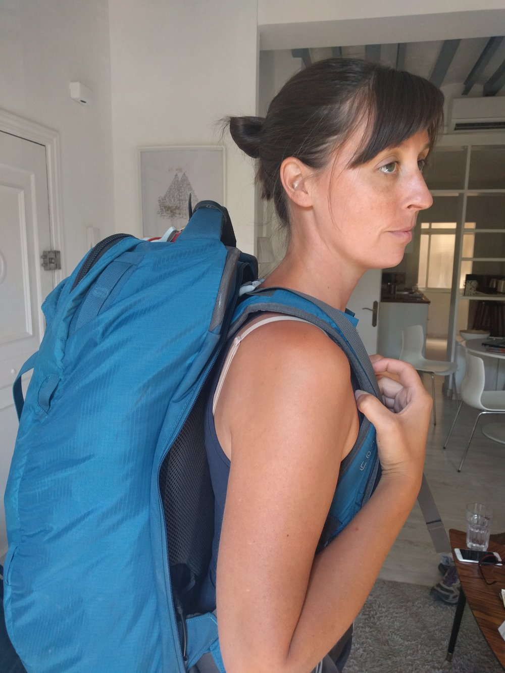 The Osprey Farpoint 55 looks much more like a traditional travel backpack.