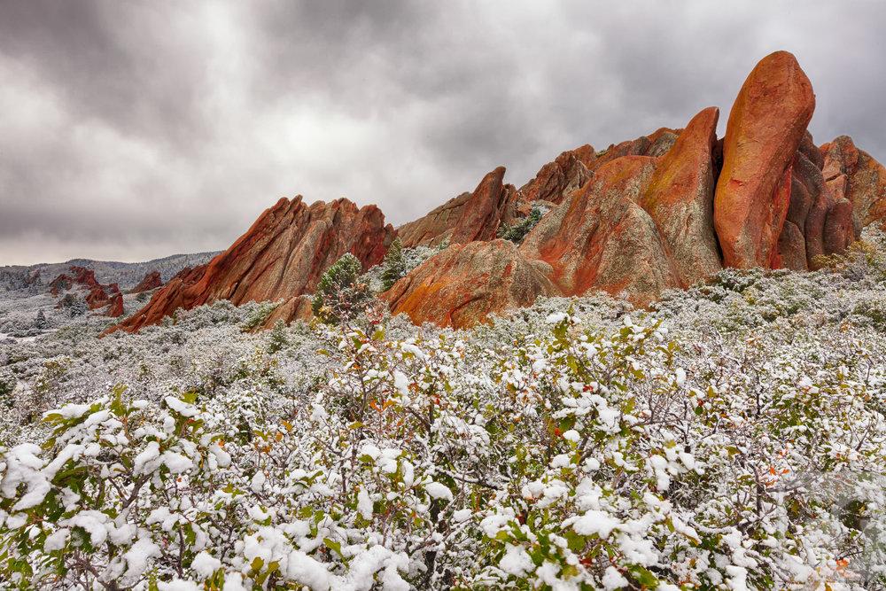 Nature's Fairy Dust.