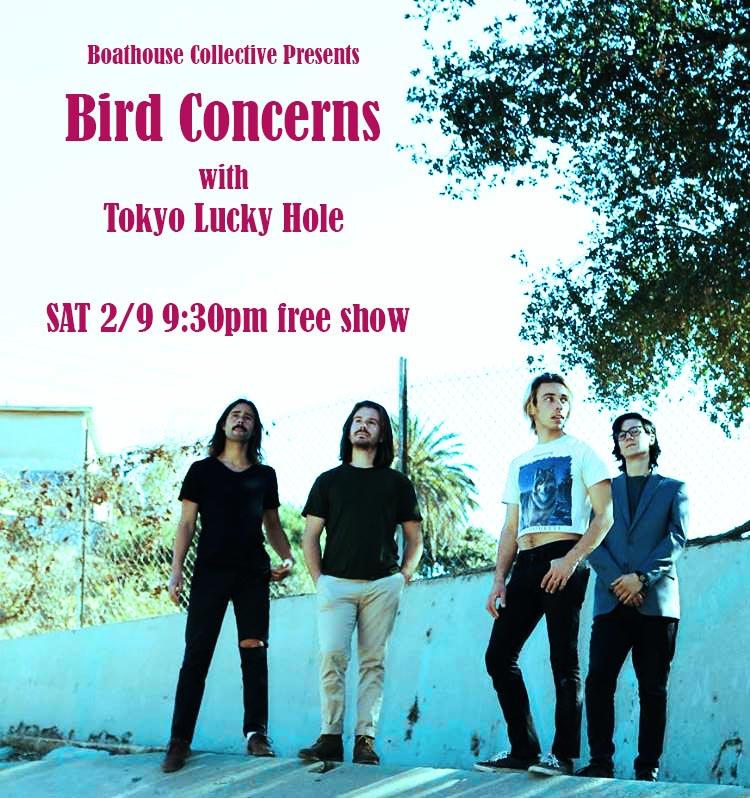 Bird Concerns.jpg