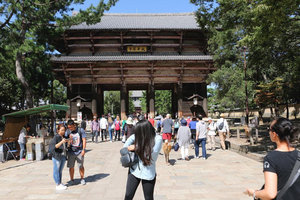 Nara (Deer) Park, Nara