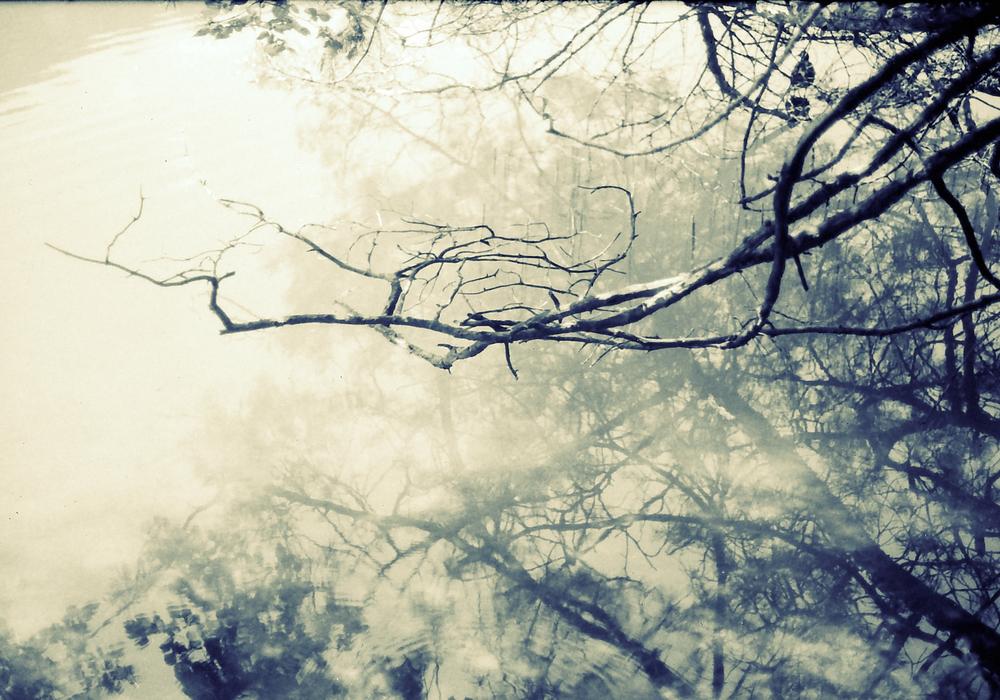 snapshots_34.jpg