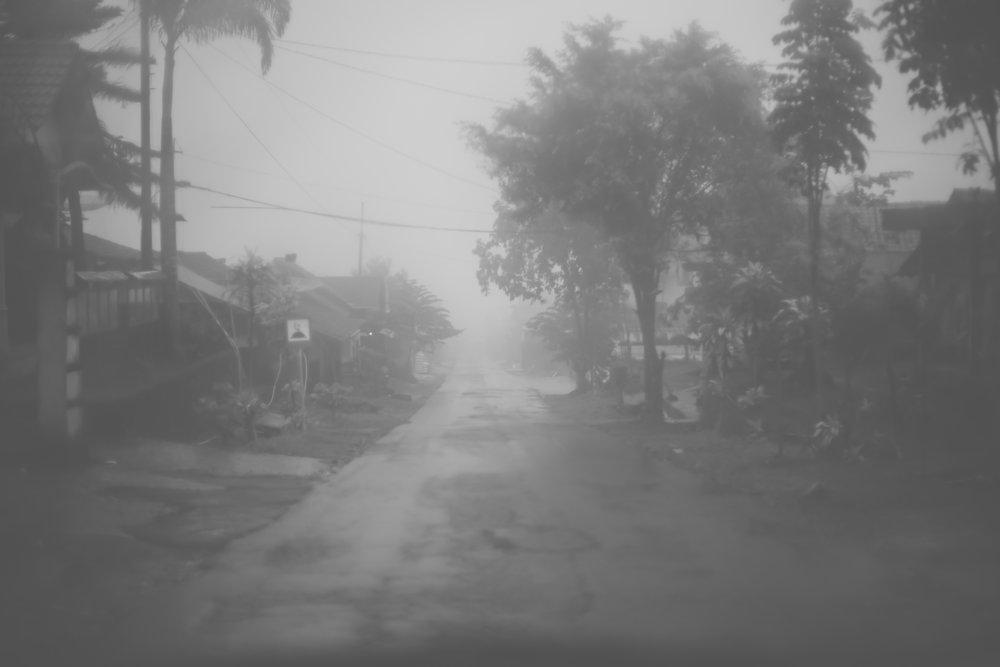 indo fog (1 of 1).jpg