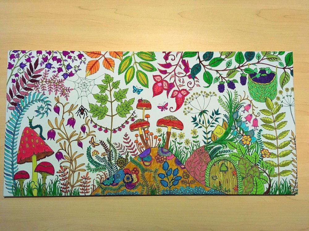 Johanna Basford - The Enchanted Forest Canvas - 18/19 December 2016