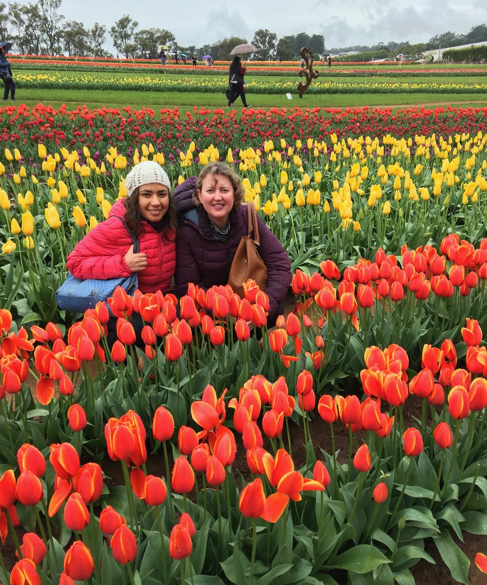 EMMA-JANE AND MS S AT THE DUTCH THEME TULIP FESTIVAL, 18th SEPTEMBER 2016