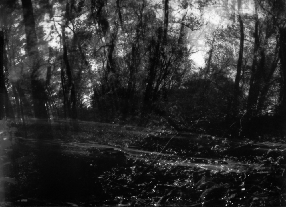 "Taken with handmade pinhole camera ""Sharaku"" consisting 3 holes"