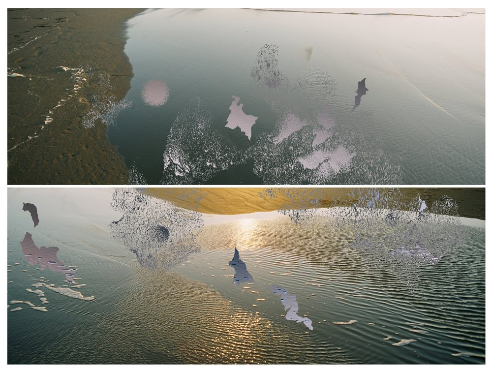 reflection_3.jpg
