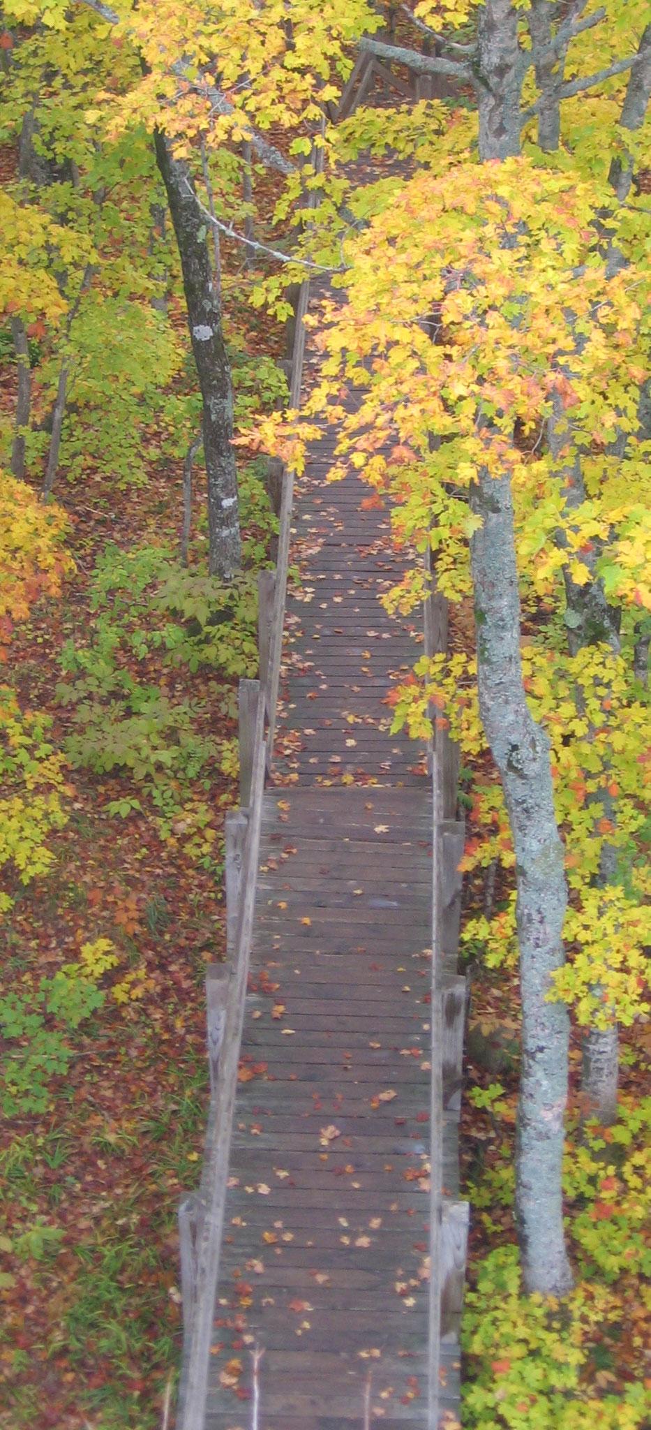 Porcupine Mountains State Park, Michigan