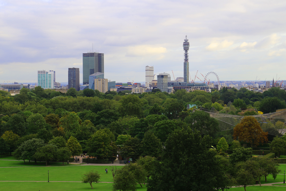 Primrose Hill offers a fascinating view of London's skyline