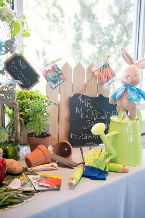 Peter Rabbit Themed Baby Shower Kristine King Events