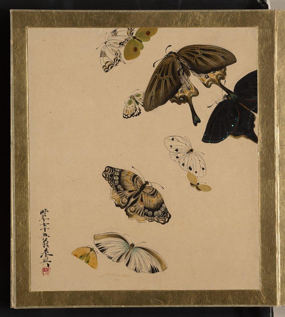 Butterflies | Shibata Zeshin | 1881 | Japan | sourced via www.metmuseum.org | Public Domain