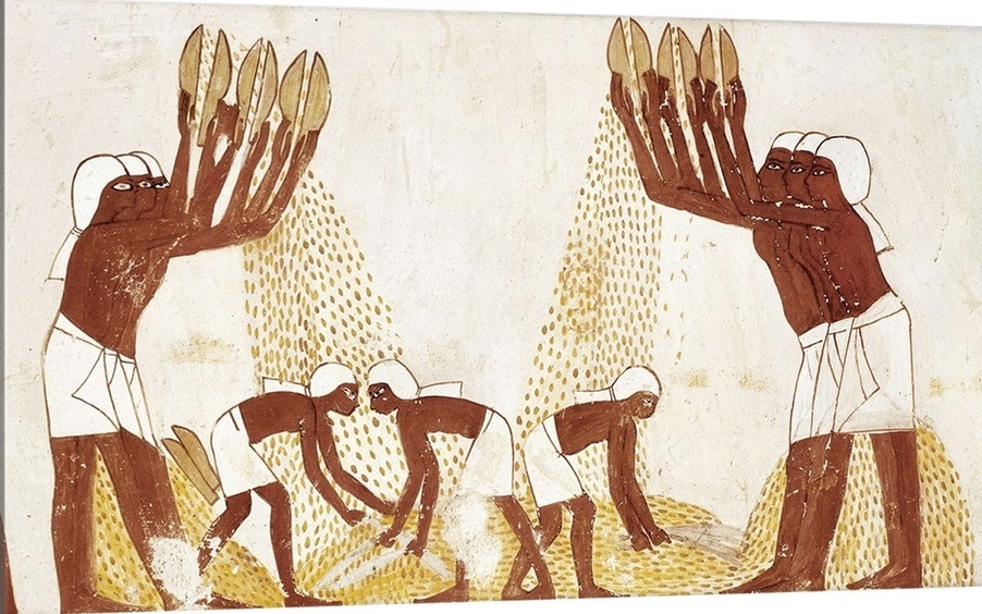 winnowing-of-the-grain-in-the-threshing-floor-egyptian-art,1992027.jpg