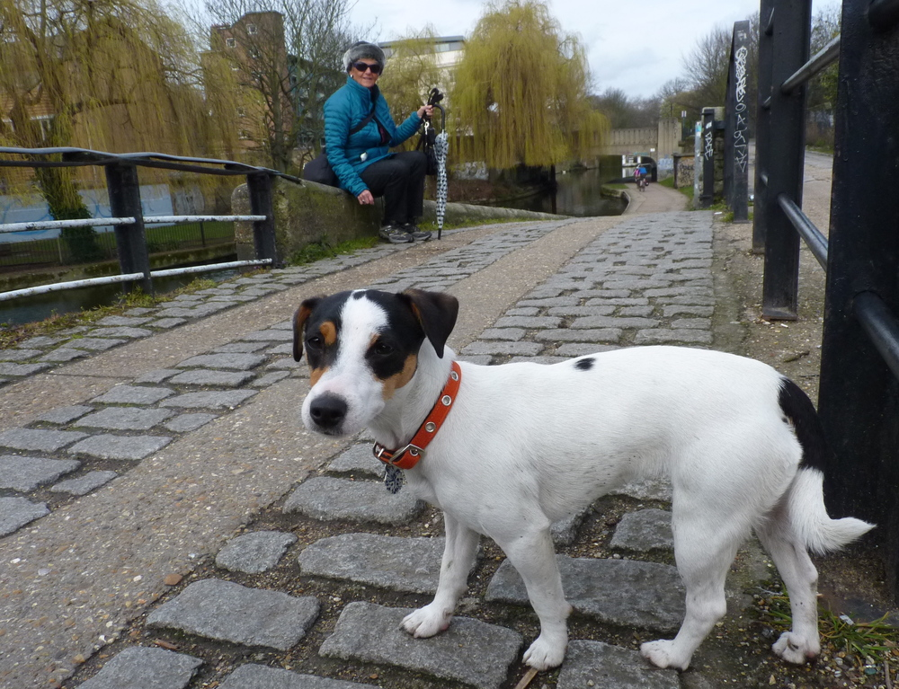 I live near lots of canals. People bicycle very fast down the canals so I had to learn to be careful. Can you tell I was a little scared? I was only six months old!
