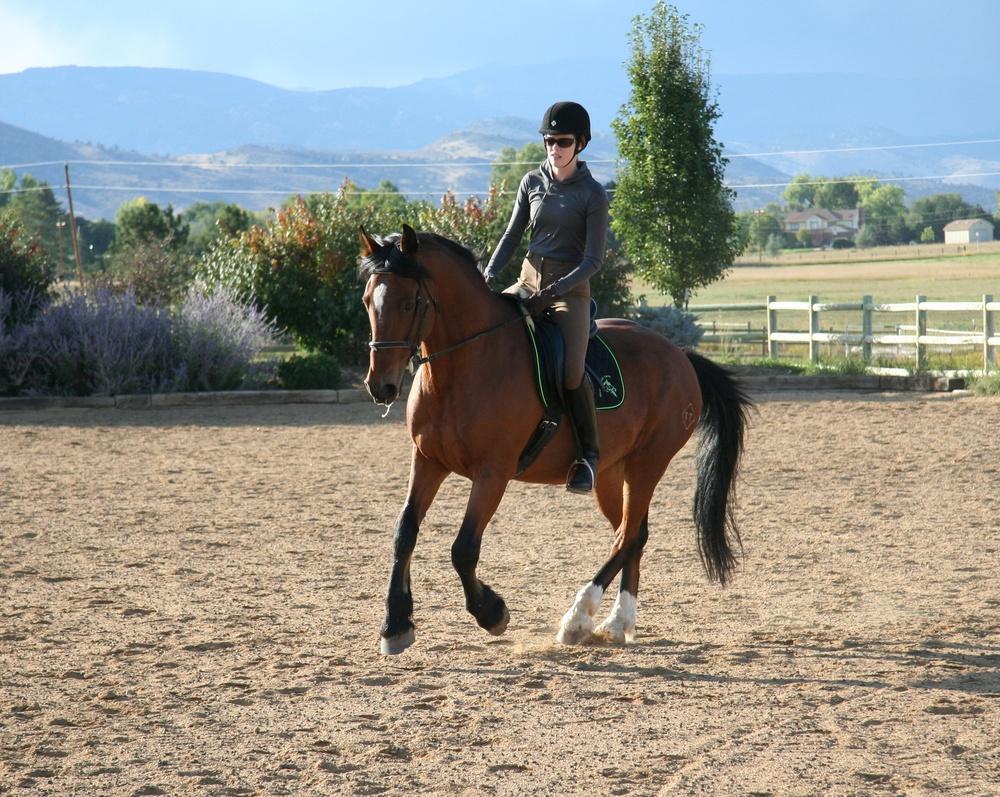 Cathy Lauderbaugh trains horses in Boulder County Colorado.