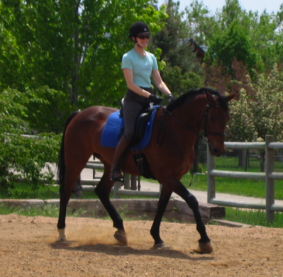 Reviews and Testimonials for Cathy Lauderbaugh as a horse trainer in Boulder Colorado.