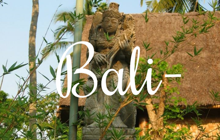 Travel to Blissful Bali November 4th to the 18th,2015