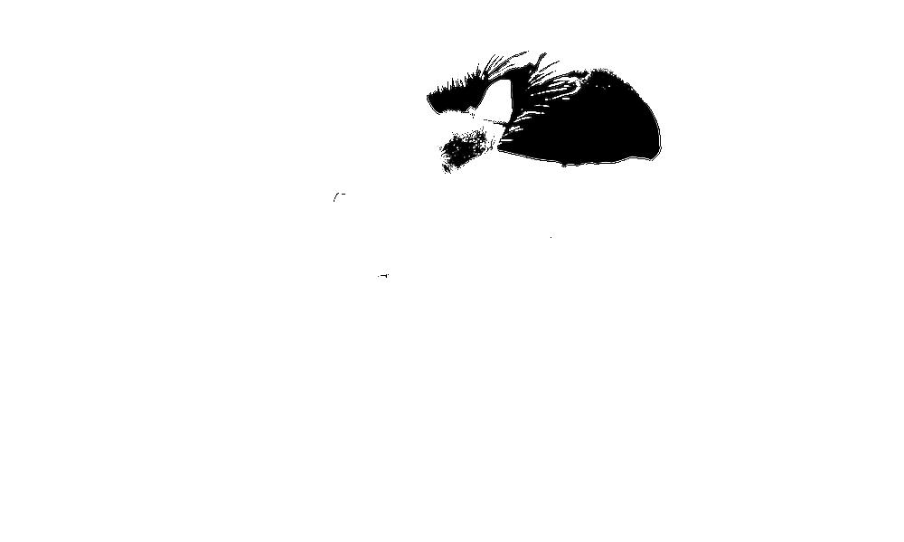 mukundasept20-07801.png