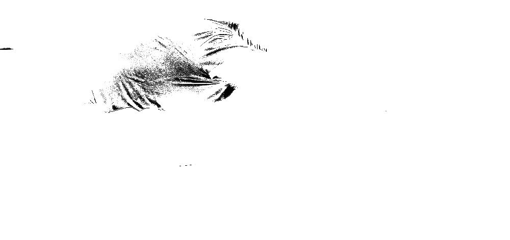 mukundasept20-07808.png