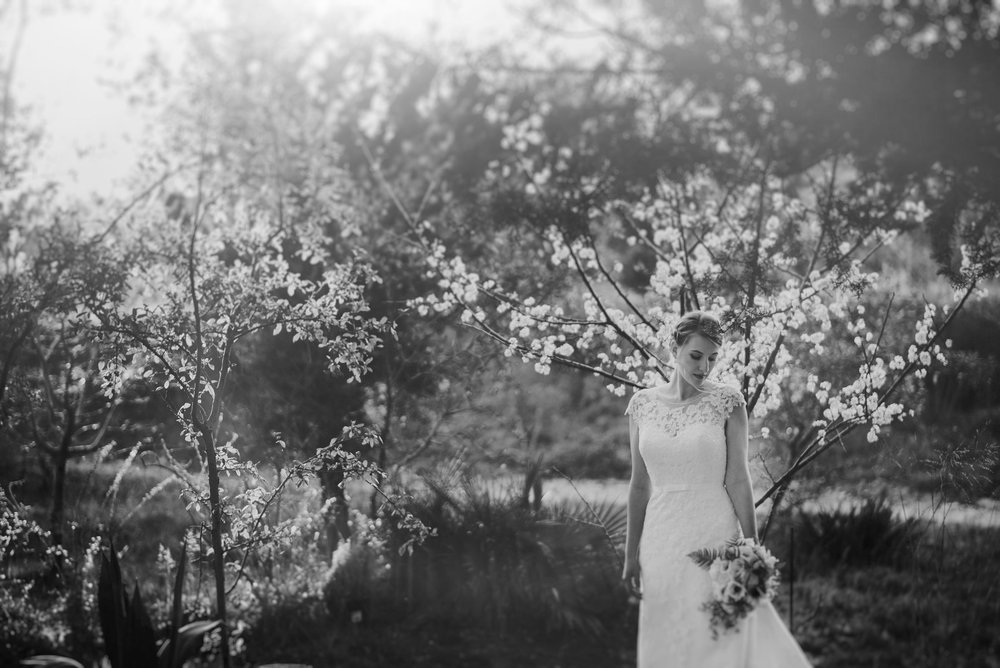 Texas Hill Country Wedding at Blue Rock Estate