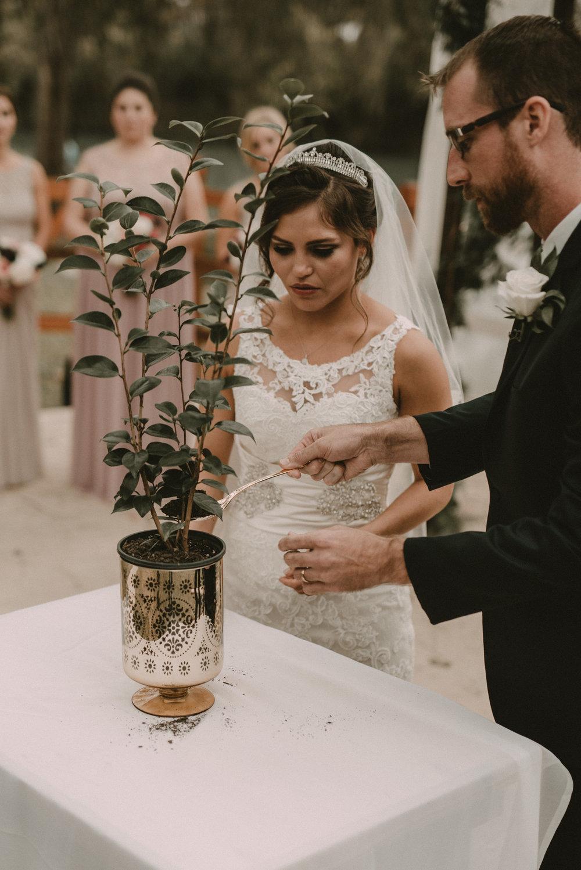 Unity Tree Wedding Ceremony