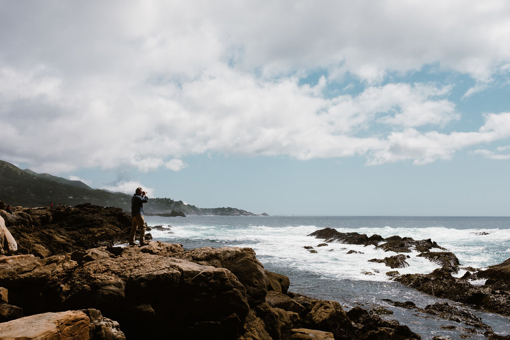 Point Lobos Bird Watcher