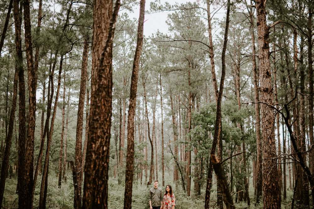 engagement photos in texas pine trees