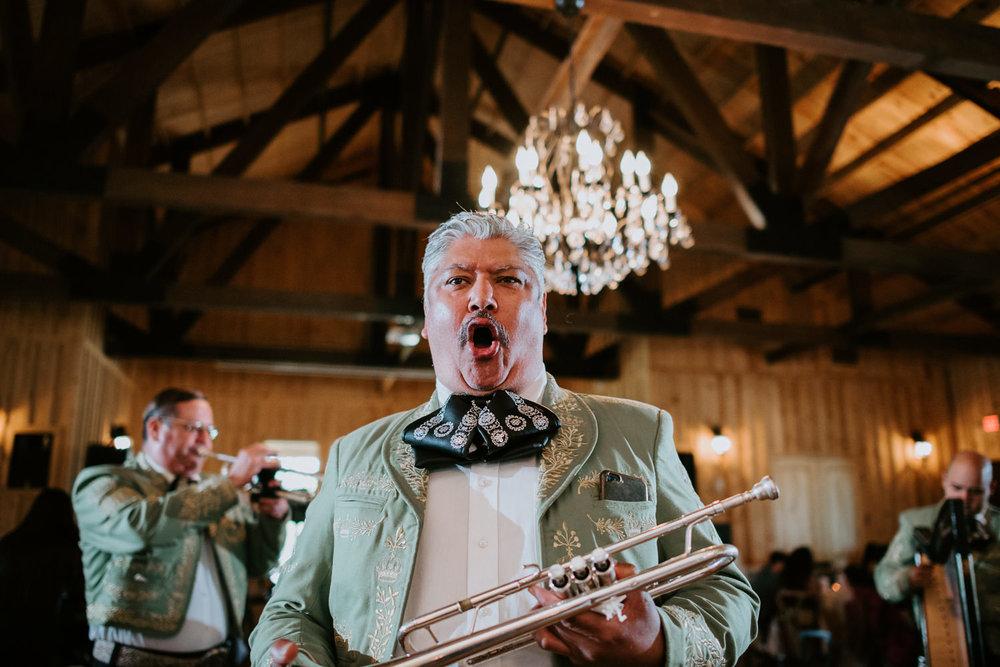 mariachi at houston texas wedding