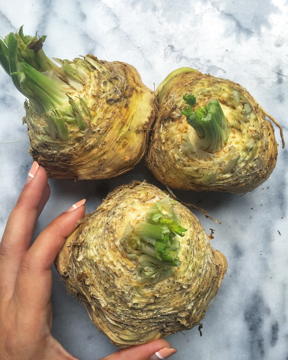 Celery Root - Celeriac