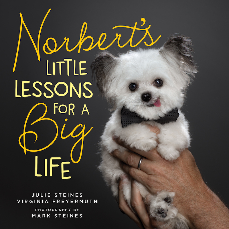 NORBERT LIFE LESSONS BOOK COVER RGB.jpg