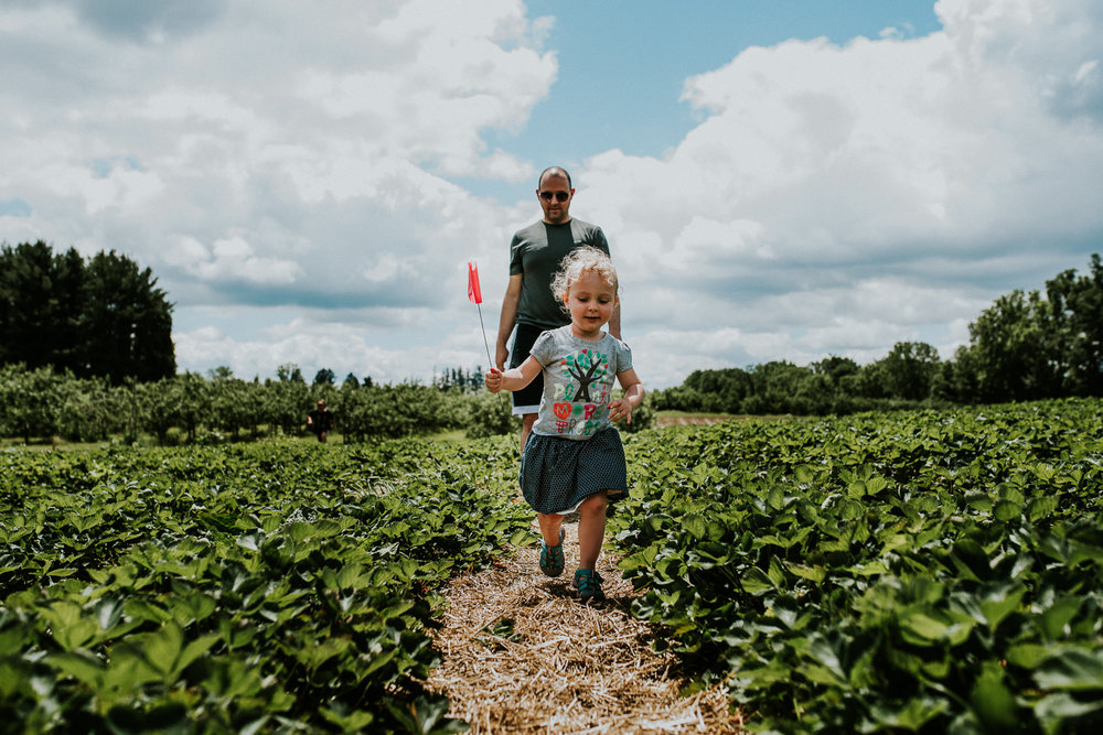 Strawberry Picking-12.jpg