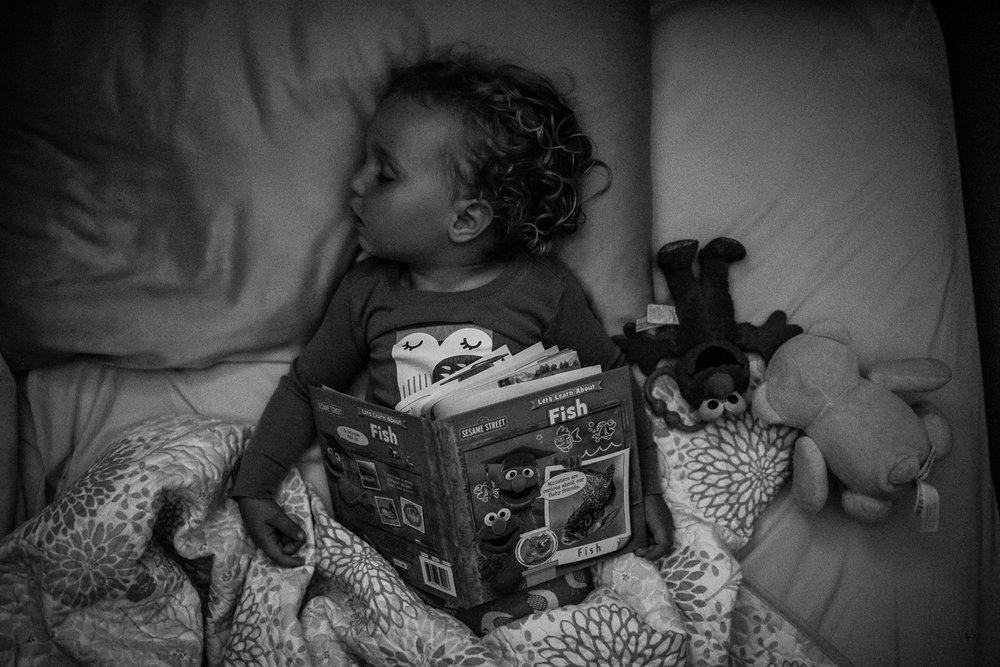 Black and white photograph of a toddler girl asleep in her bed with a book open on her chest and a stuffed bear and stuffed Elmo beside her with pillow and blanket crumpled around her.