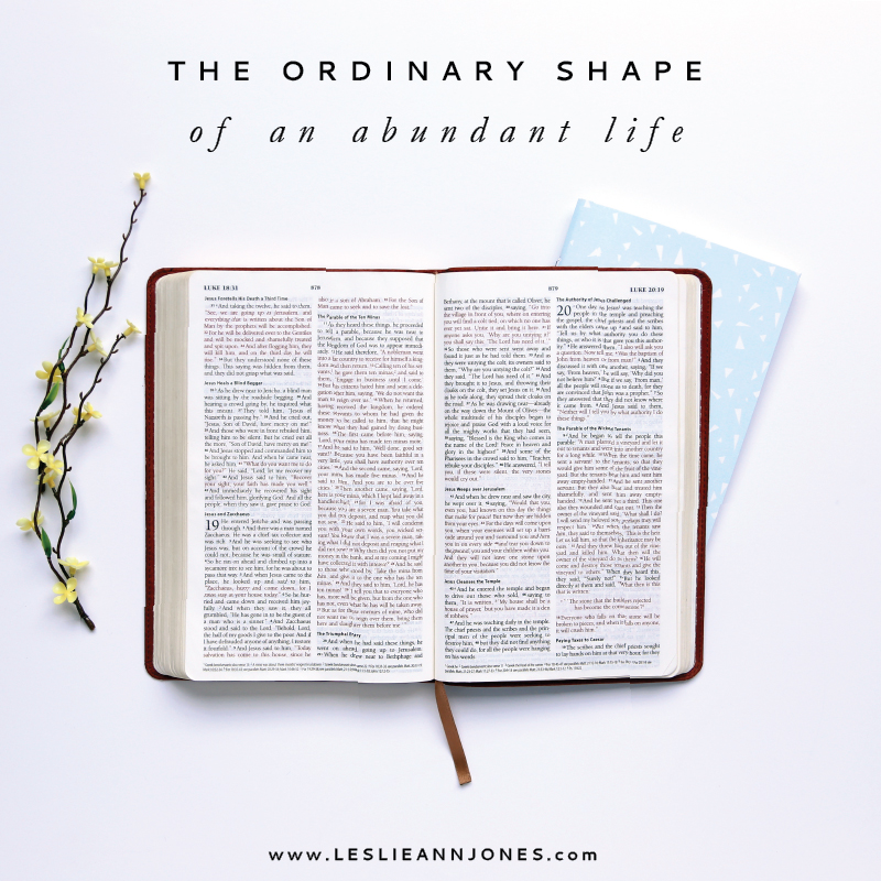 The Ordinary Shape of an Abundant Life by Leslie Ann Jones
