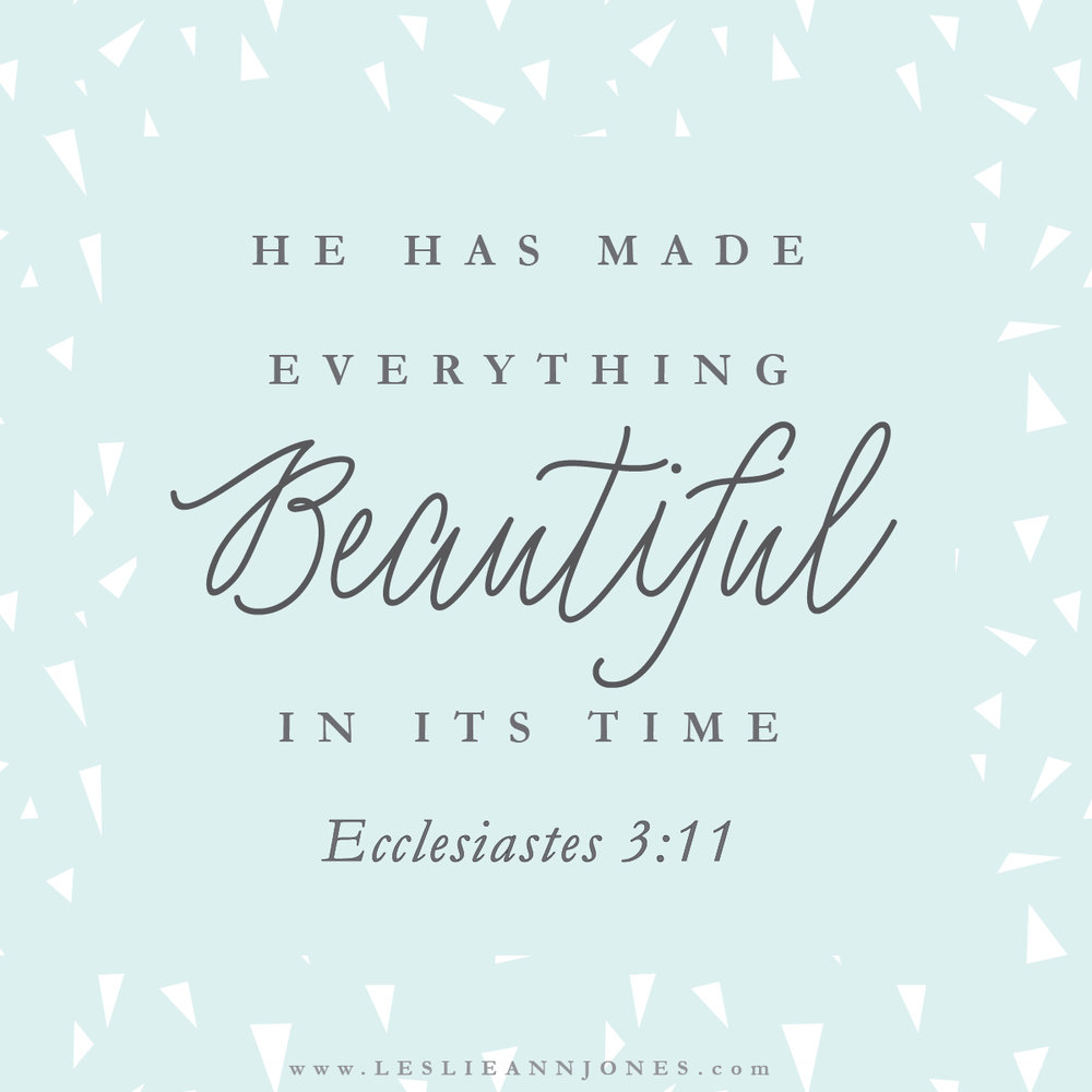 He has made everything beautiful in its time. Ecclesiastes 3:11. Scripture Art by Leslie Ann Jones