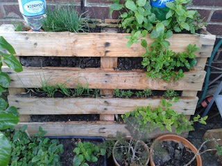 A free upcycled pallet herb planter ~ Eco Thrifty Living