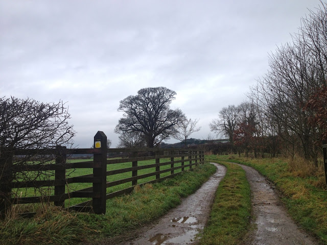 Two days in James Herriot country