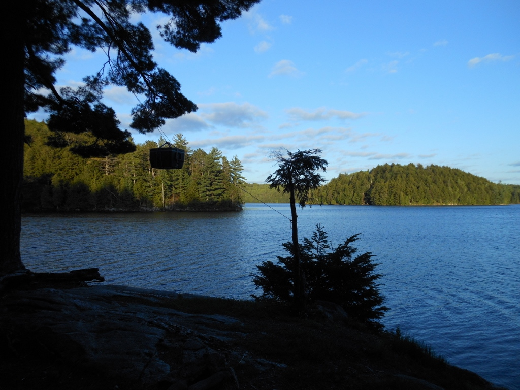 Our annual trip to Algonquin Provincial Park, this time in the rain