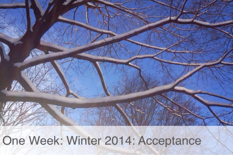 mumturnedmom: One Week: Winter 2014: Acceptance
