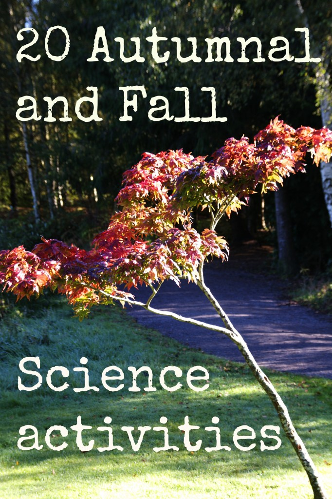 Science for kids - Autumn and Fall activities
